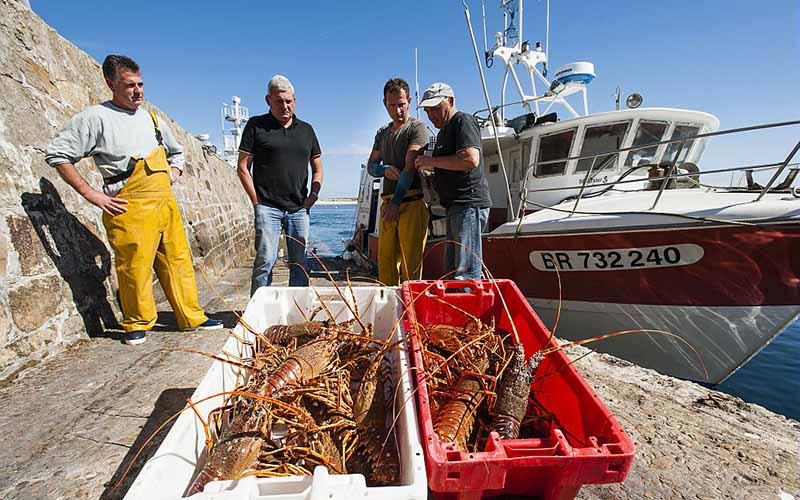 Pêcheurs de homards © Xavier Dubois